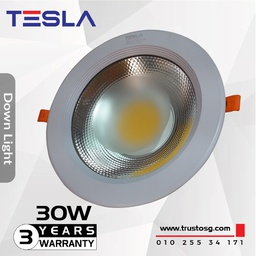 Down  Light COB 30 W (TSL-DL30W) Warm