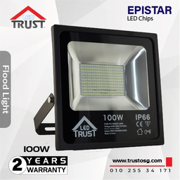 Flood Light 100 W (TST-TGS020-100W)