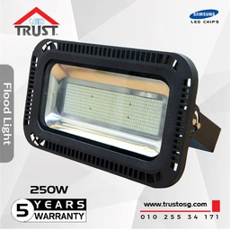Flood Light 250 W (TST-TGS023-250W)